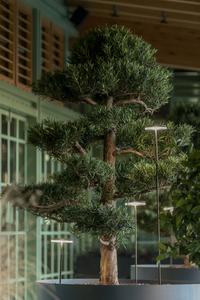 Prenosná lampa Platek - NAIL LED 3000K 93 ° small 6